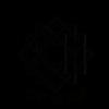 Siddhi Logo